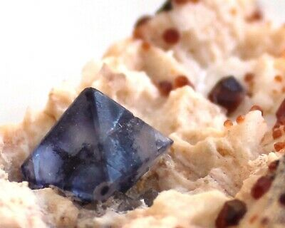 Perfect Octahedral Fluorite with garnet and Smoky Quartz on Feldspar