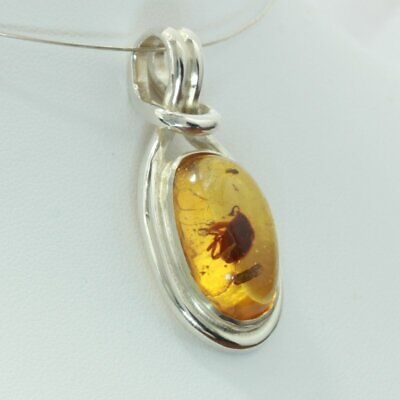 Copal Ancient Insects Young Amber Silver Celtic Knot Infinity Pendant Design 63