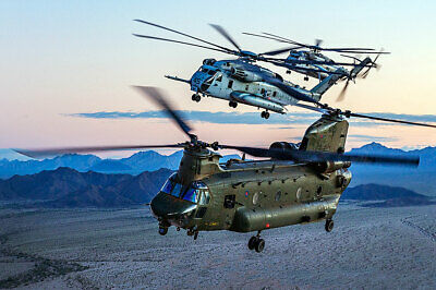 Other Militaria Collectibles Raf Chinook Helicopter Over Afghanistan 16x24 Silver Halide Photo Print