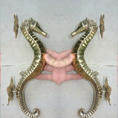 2 large brass 35 cm SEAHORSE solid hollow heavy brass door polished old style B