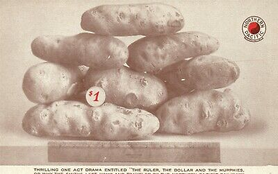 Exaggerated Potato Antique Postcard Northern Pacific Yellowstone Park Line