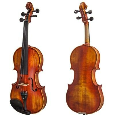 Paititi 4/4 Size PTTVN07A Intermediate Level Violin with Case, Bow and More