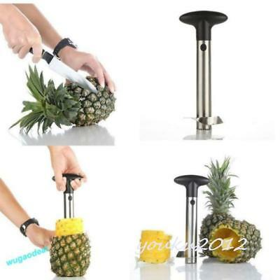 Stainless Steel Easy Gadget Kitchen Fruit Pineapple Slicer Cutter Peeler CP