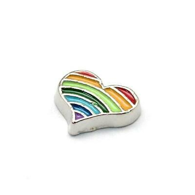 Rainbow Floating Charms Enamel & Alloy Silver/Mixed 7 x 9mm  5 Charms Accessory