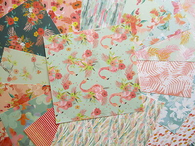 """Paradise Crush 6x6"""" Scrapbook Papers 16 sheets by First Edition - tropical"""