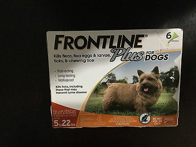 Frontline Plus  For Dogs Flea & Tick Control Dog 5-22 Lbs 6 Pack- 6 Month- Usa