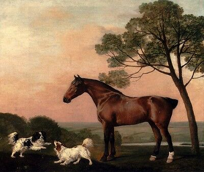 "Handmade Oil Painting repro George Stubbs A Bay Hunter With Two Spaniels 20""x24"""
