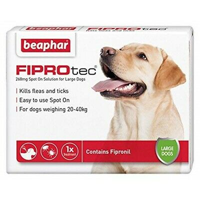 Beaphar Fiprotec Spot Sur Grand Chien 1 Pipette - Large Dog Treatment Dogs