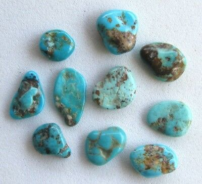 10 pcs Elisa Mine Turquoise Natural Nuggets LOT Tumbled Rock Polished Gemstones