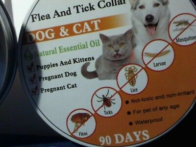 Flea & Tick Collar Cats & Dogs