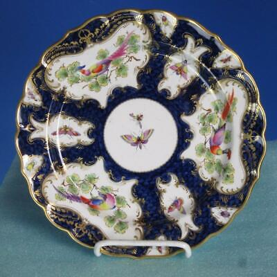 Royal Worcester China - 2525 Bird and Insect Decorated Plate - 9 inches