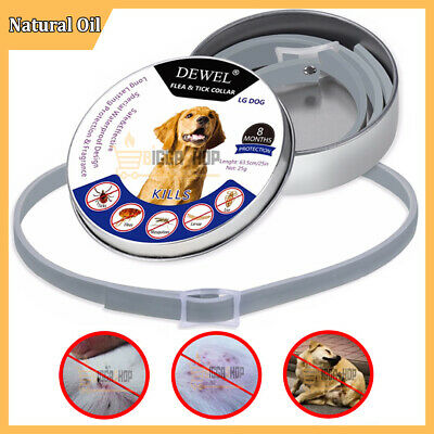 SERESTO Flea and Tick Collar For Small Dog under 8kg (18 lbs) and Cats NEW