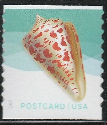 US 5167 Seashells Alphabet Cone Postcard single (from coil of 100) MNH 2017