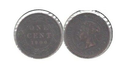 1900 Canada Queen Victoria Large Cent in Fine to Very Fine Condition ~