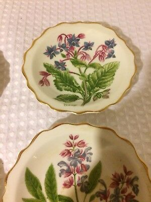 Set of 4 Vintage Heritage Regency Collection English Bone  butter pats