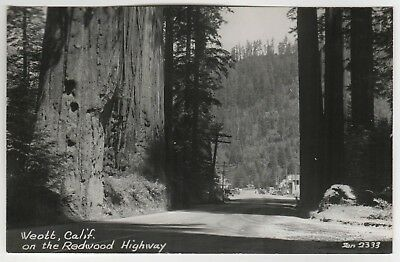 WEOTT CALIFORNIA RPPC RP Real Photo Postcard ZAN STARK Redwood Highway HUMBOLDT