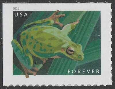 US 5395 Frogs Pacific Tree forever single (1 stamp) MNH 2019