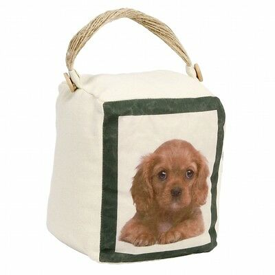 16,5cm Best of Breed Türstopper Hund Cavalier King Charles Spaniel