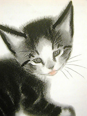 """Clare Newberry """"Brenda"""" the BLACK KITTEN w WHITE FACE 1940 Vintage Print Matted"""