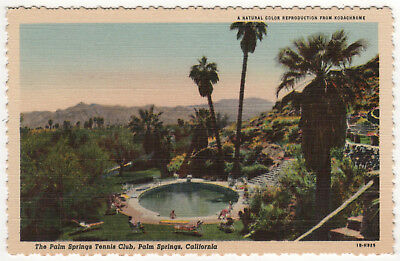 PALM SPRINGS CALIFORNIA PC Postcard TENNIS CLUB Stephen Willard CALI CA