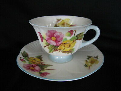 Shelley - BEGONIA - Teacup and Saucer
