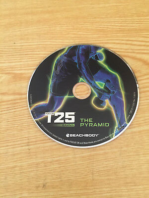 FOCUS T25 THE Pyramid DVD Replacement Disc ONLY