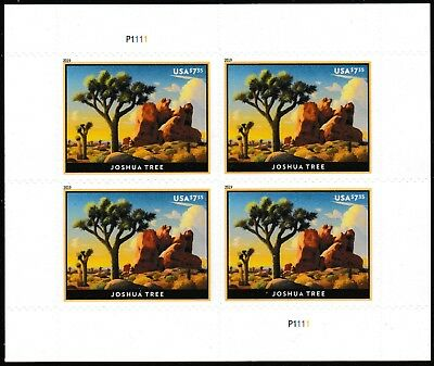 US 5347 Priority Mail Joshua Tree $7.35 sheet MNH 2019