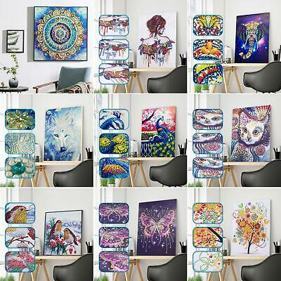5D Special Shaped Diamond Painting DIY Partial Drill Cross Stitch Kits Crystal
