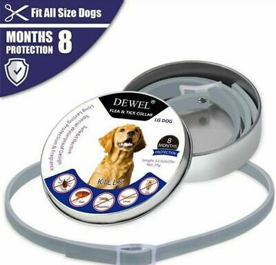 Flea and Tick Collar for Large Dog Over 12lbs 8 Month Protection Waterproof.