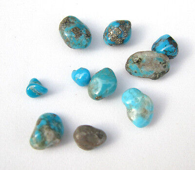 10 Campitos CLOSED MINE Turquoise Natural Nugget LOT specimen Rock Lapidary NR