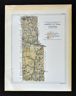 1901 Minnesota Geological Map Wadena Todd County Long Prairie Aldrich Geology MN