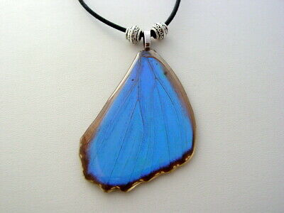 Electric Blue Morpho Forewing Real Butterfly Wing Necklace Nature Jewelry bm11a