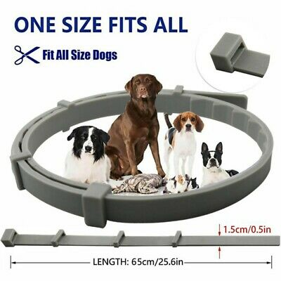 Flea and Tick Collar for Cats Dogs protection Prevention Anti insect Pet Collar