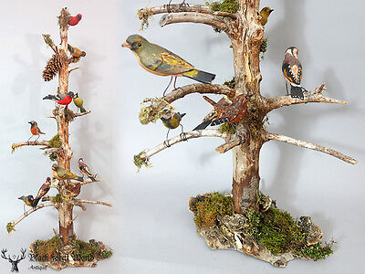 awesome detailed wood bird stand xlarge and very fine done