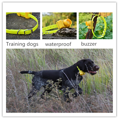 Dog Training Collar Waterproof Hunting Beeper Small Medium Large Dogs