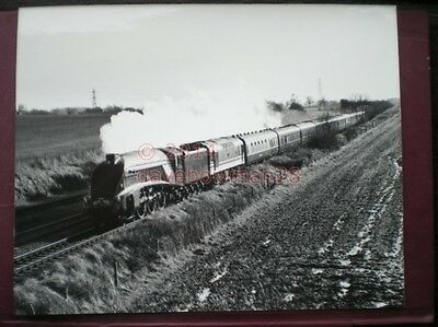 Photo  10 X 8 Inch Lner A4 Loco No 4498 'Sir Nigel Gresely' With 'The White Rose