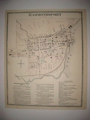 Antique 1873 Hammondsport City Steuben County New York Handcolored Map Rare Fine