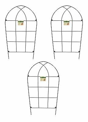 120cm high Wall Climbing Support Trellises Set of 2 Rosa Garden Trellis