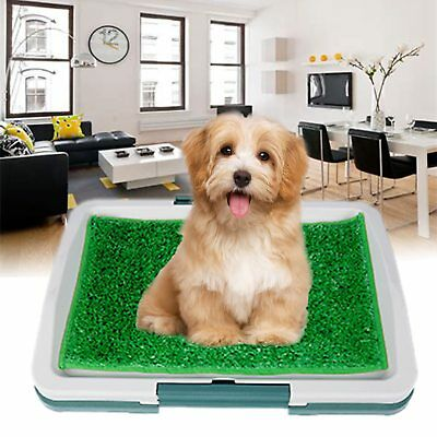 Pet Dog Toilet Mat Indoor Training Grass Potty Pad Loo Clean Tray Large Puppy UK
