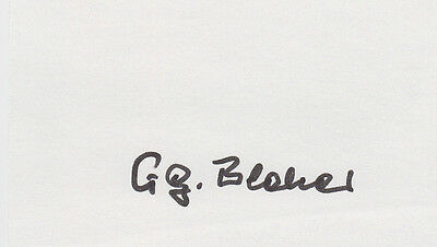 Knights Cross WWII Georg Bleher Battle of Kurland Eastern Front SIGNED AUTOGRAPH