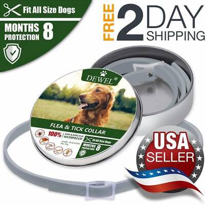 *HOT*DOGS Bayer Seresto Flea And Ticks Collar For Larger & Larger CATS- 8Months