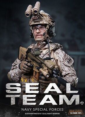 Mini Times toys MT-M012 US Navy Special Forces Seal Team 1/6 Figure
