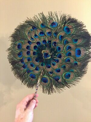 Peacock Feather Fan Round Natural Wedding Dance Props Circular 12""
