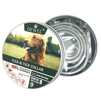 Flea Collar Flea and Tick Prevention for Dogs Adjustable 8 Months Protaction