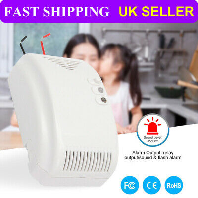 12V Combustible Gas Leak LPG Natural Gas Detector Propane Alarm For Home Alarm F