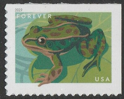US 5396 Frogs Northern Leopard forever single (1 stamp) MNH 2019