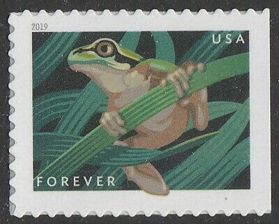 US 5398 Frogs Squirrel Tree forever single (1 stamp) MNH 2019
