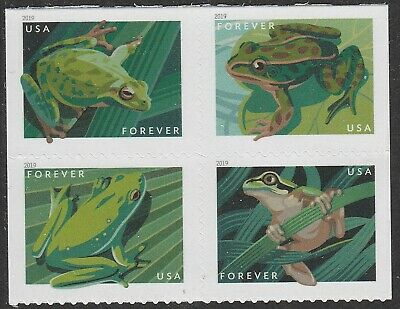 US 5395-5398 5398a Frogs forever block set (4 stamps) MNH 2019