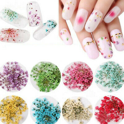 12 Colors Real Dried Dry Flowers 3D Nail Art Decoration Design Tip Manicure Top
