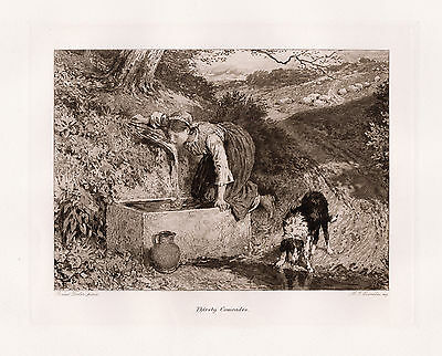 """Beautiful 1800s Myles Birket Foster Etching """"Thirsty Comrades"""" FRAMED Signed COA"""